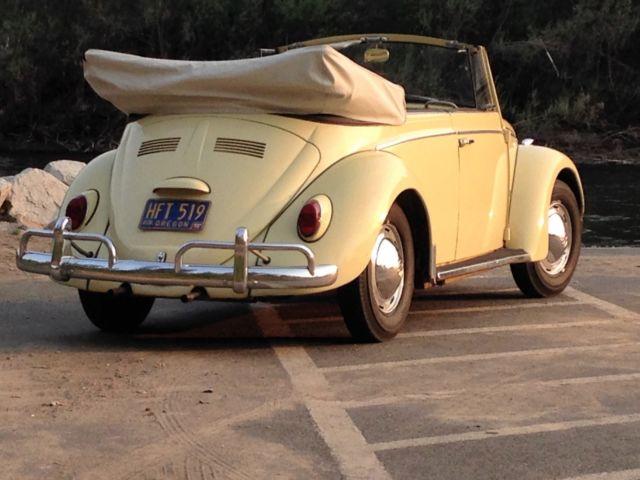 1965 Volkswagen Beetle Convertible Bug NEW RESERVE PRICE