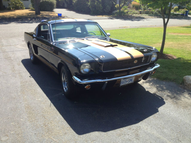 Ford : Mustang Standard