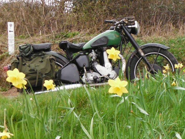 BSA  B31  1948 Motorcycle