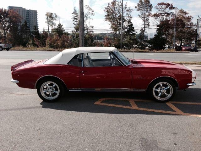 Chevrolet : Camaro 454