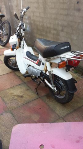 HONDA CHALY CF50 MONKEY BIKE COLLECTORS