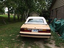 Ford : Mustang LX